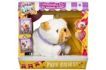 Интерактивный щенок Люблю целоваться Little Live Pets My Kissing Puppy Wrinkles